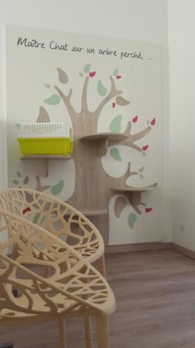 Espace d'accueil - attente - arbre à chat